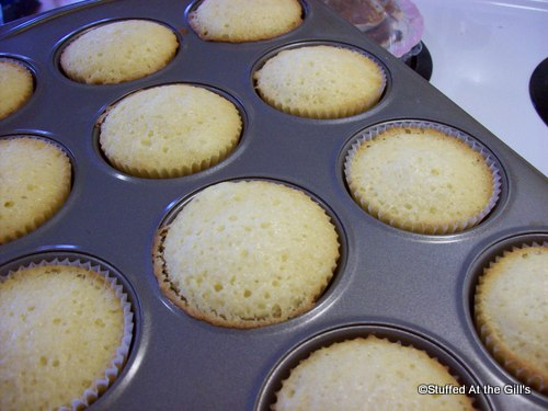 Cupcakes fresh from the oven.