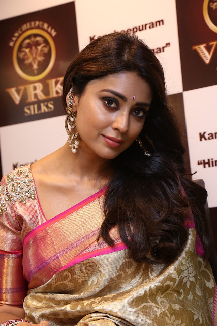 Actress Shriya Saran Stills in Saree at VRK Silks Launches at Himayat Nagar  0005.JPG