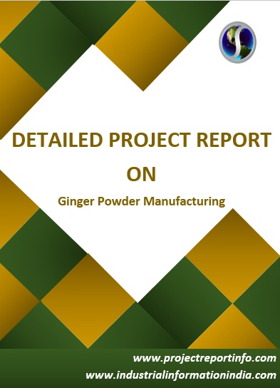 Project Report on Ginger Powder Manufacturing