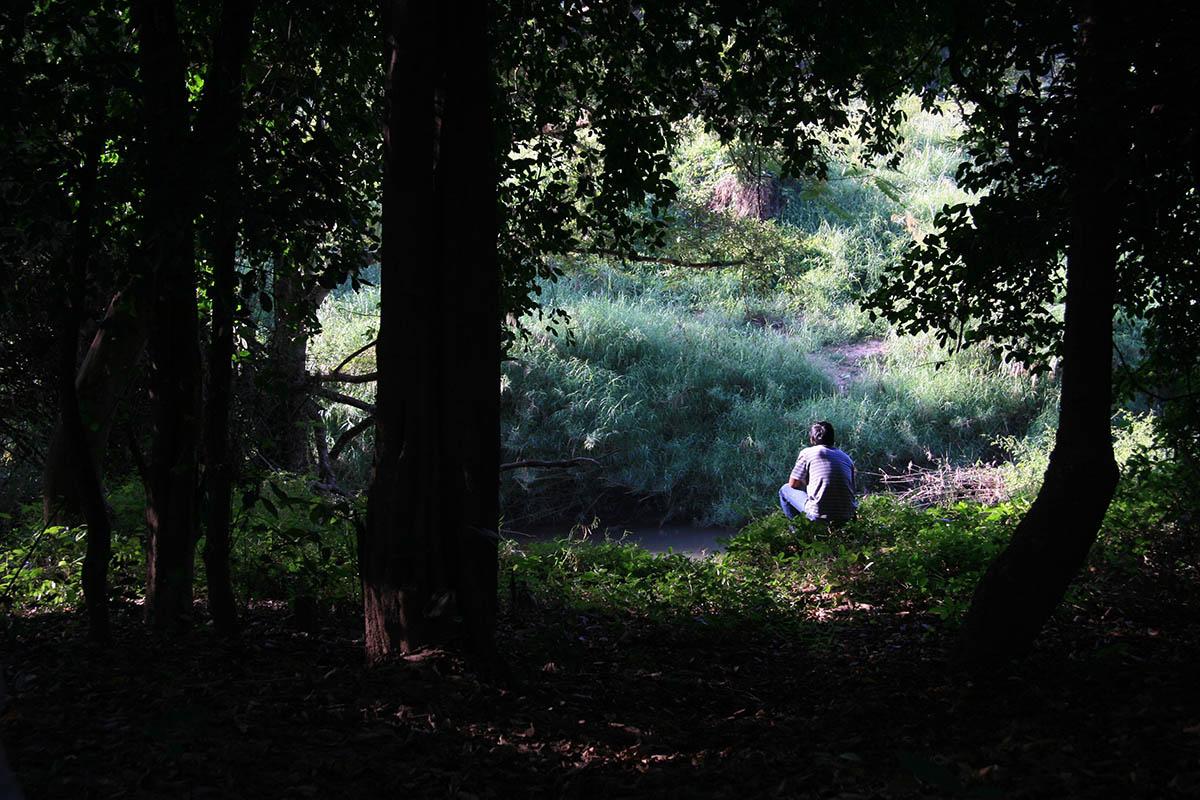 Фильм Дядюшка Бунми, который помнит свои прошлые жизни ...