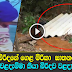 Husband is arrested over the murder of his wife in Eheliyagoda