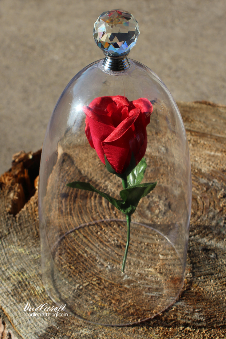 Doodlecraft beauty and the beast enchanted rose in cloche diy for now this gorgeous enchanted rose izmirmasajfo
