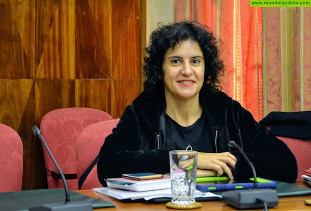 El Pleno del Cabildo aprueba el Reglamento de la Comisión Insular de Patrimonio Cultural