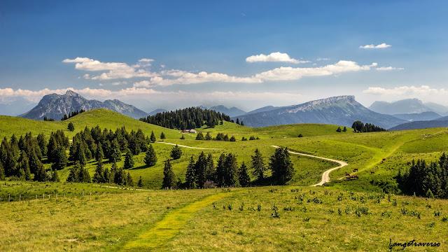 Semnoz, Haute-Savoie, France, Rhone Alpes, plateau, vert, montagne, mountain, landscape, paysage, Alpes, Alps