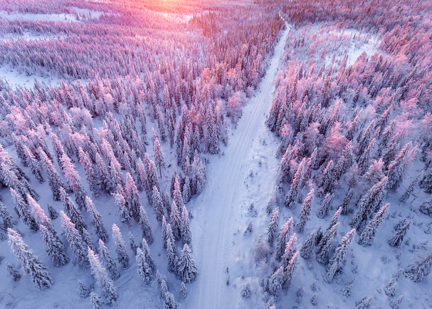 best Things to do in Lapland