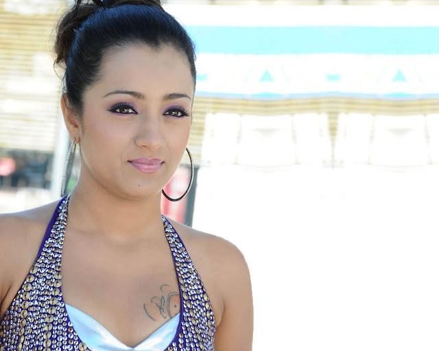 Hot Trisha Krishnan Bikini, Saree Clevage Photos, Images