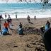Realizan Jornada de Limpieza en la Playa de Ciénaga; Retiran 120 Bolsas de Basura