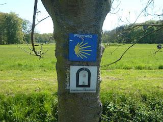 An einem Baum hängen Wegweiser vom Pilgerweg und Römerkanal-Wanderweg übereinander