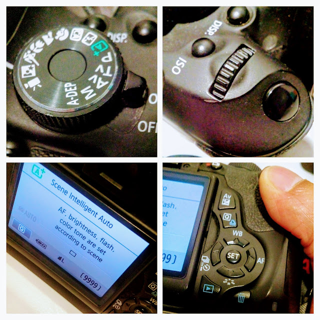 Canon EOS Rebel 3Ti Camera - A four picture collage of the LCD monitor, mode dial, main dial and cross keys.