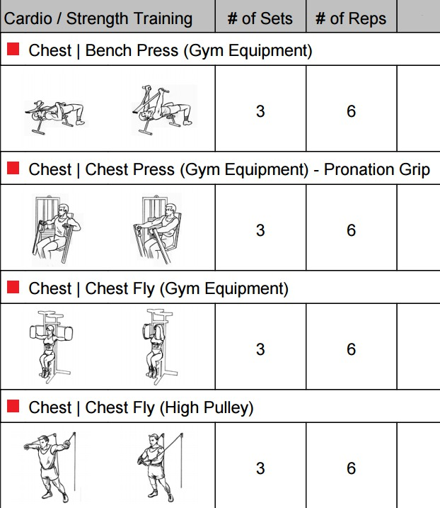 Workout Chart to Build Big Chest Muscles