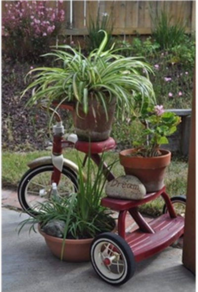 Sepeda roda tiga anda menciptakan kesan unik dan menarik di kebun, taman, atau halaman rumah.