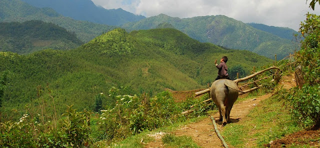 Stunning Ha Giang: In pictures 5