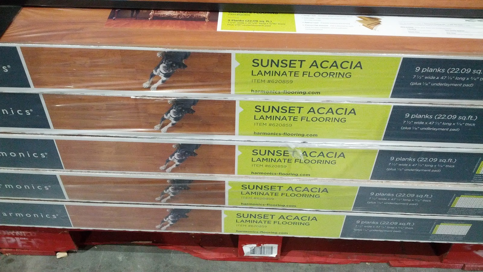 Harmonics Unilin Sunset Acacia Laminate Flooring With Pad Attached Product Info