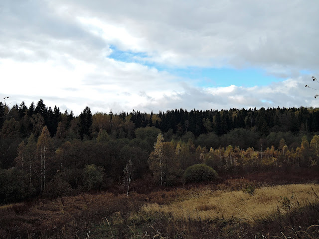октябрь подмосковье