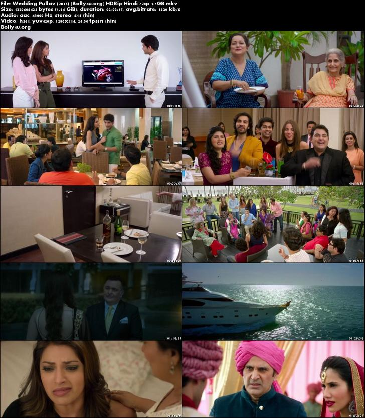 Wedding Pullav 2015 HDRip 350MB Full Hindi Movie Download 480p