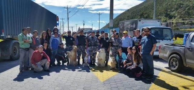 Medios: Veterinarios de la Universidad San Francisco de Quito viajan a las zonas afectadas por el terremoto