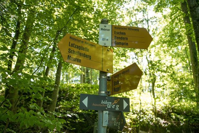 Historische Höhenweg von Bendern nach Schellenberg  Wandern Liechtenstein 10