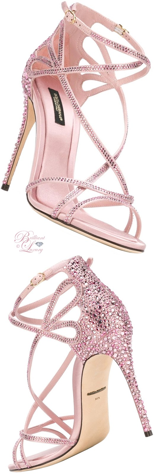 Brilliant Luxury ♦ Dolce & Gabbana Keira Sandals