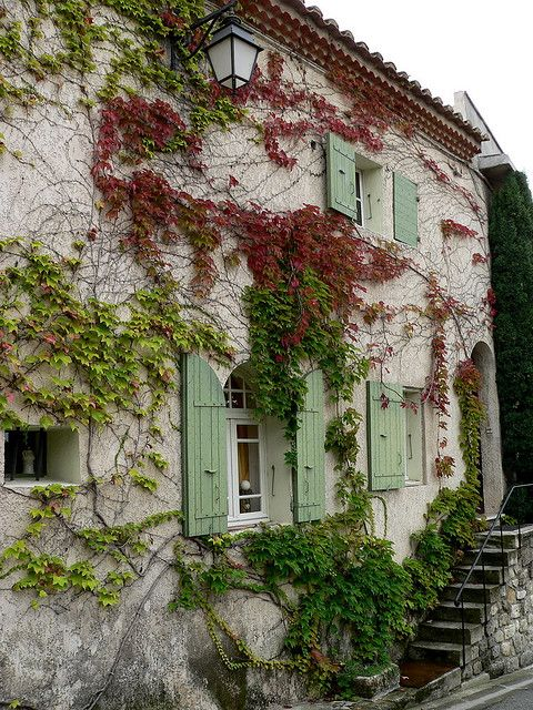Climbing vines of green and red on a #Frenchfarmhouse facade with cheerful green shutters on Hello Lovely Studio