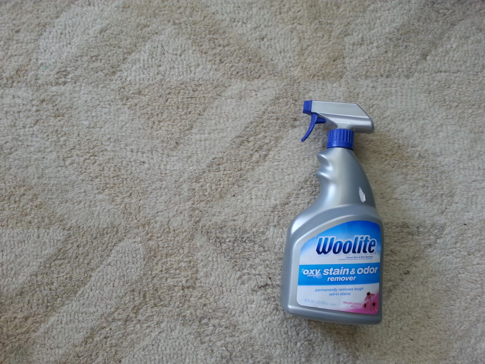 So Here S What I Think Woolite Oxy Deep Stain Amp Odor