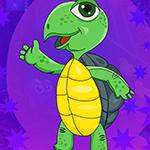 G4K Gleeful Tortoise Esca…