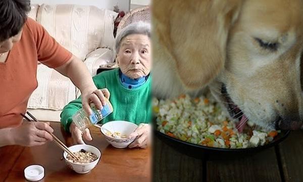 Cứ đến bữa cơm là con gái lại sẻ riêng 1 phần cơm với thức ăn vào bát ô tô cho mẹ già và chó ăn chung, hàng xóm biết chuyện chửi cô bất hiếu cho đến một hôm tiếng kèn đám ma vang lên mới hiểu vì sao