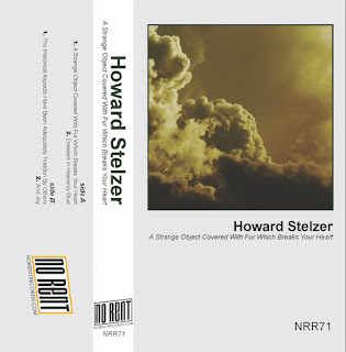 Howard Stelzer, A Strange Object Covered With Fur Which Breaks Your Heart