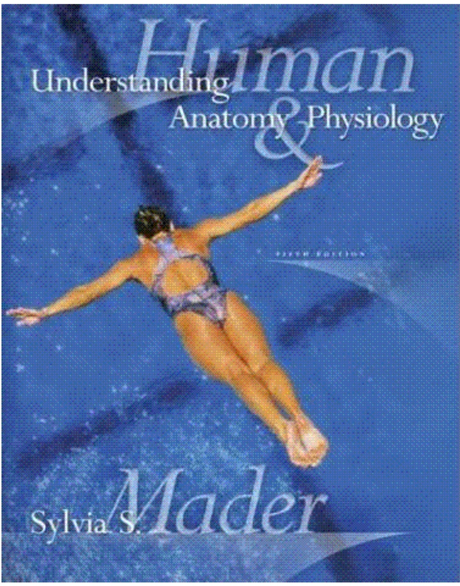 Download Free Mader Understanding Human Anatomy And Physiology 5th