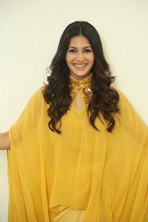 Amyra Dastur Stills At Manasuku Nachindi Movie Interview 17