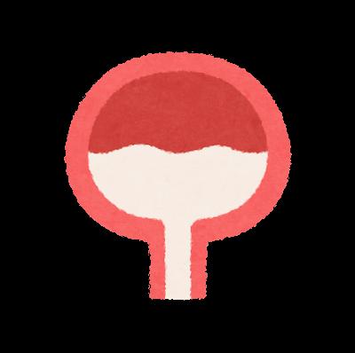 膀胱のアイコン(内蔵)