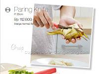 Paring Knife  ~ Katalog Tupperware Promo Juli 2016