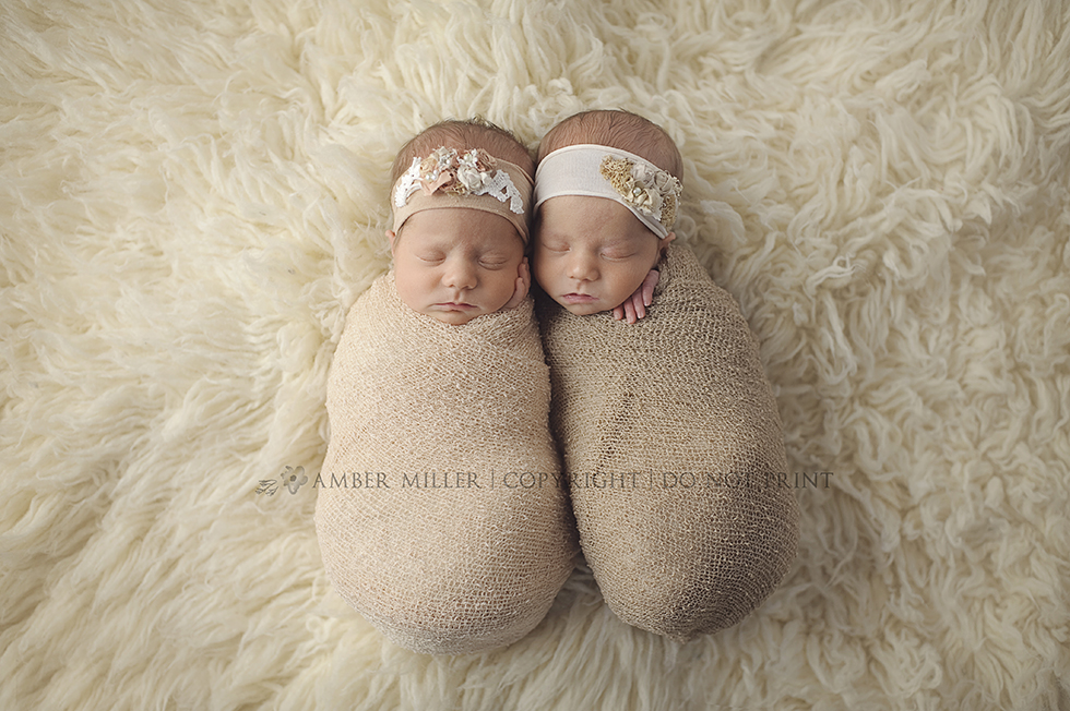 utah identical newborn twin portraits