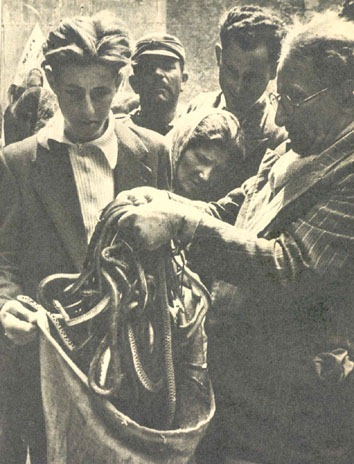 Cocullo Snake Festival