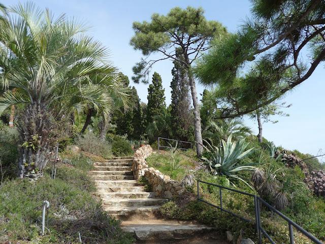 Лестница, ведущая к беседке в ботаническом саду Маримуртра