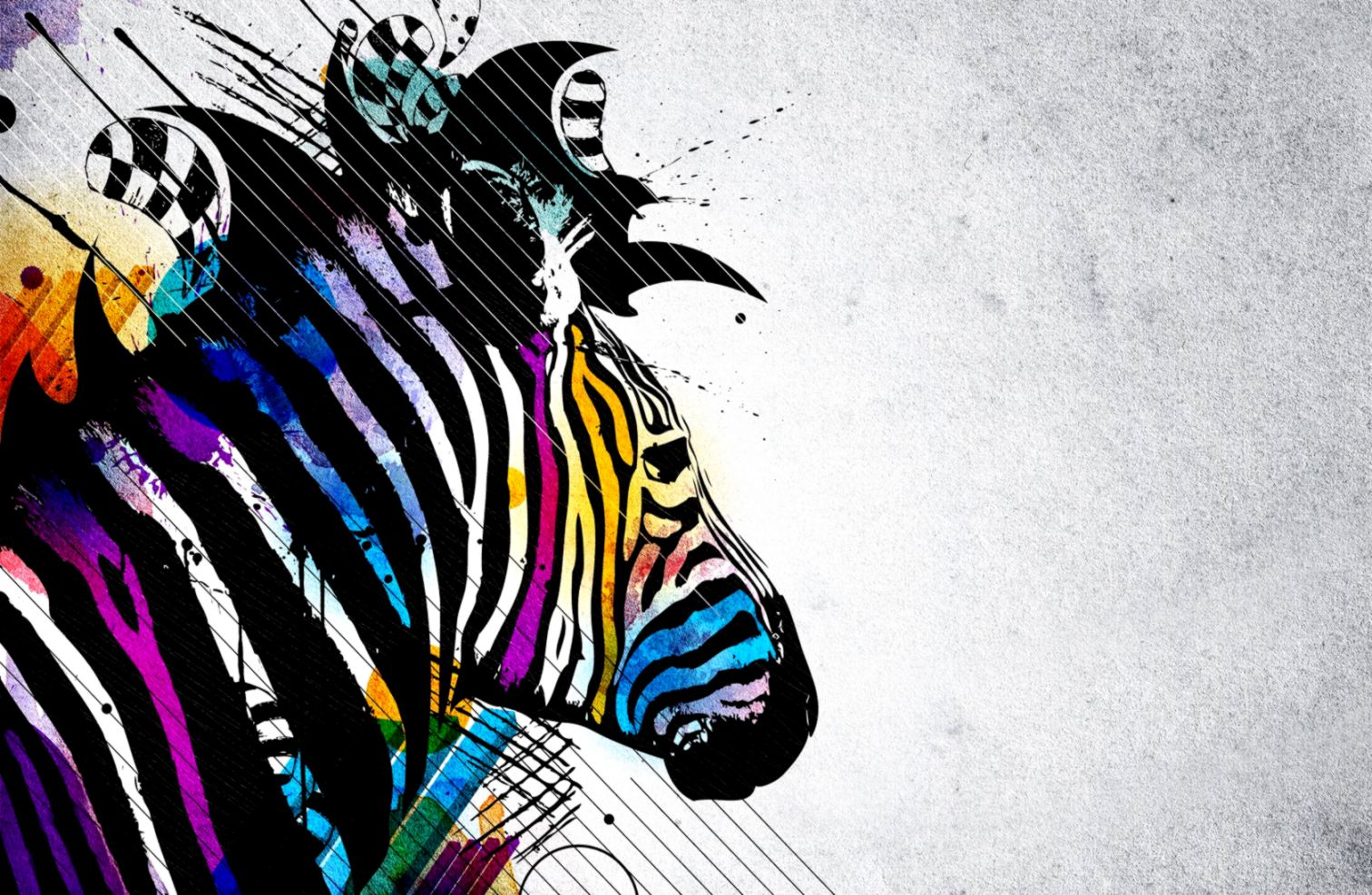 Image zebra colored backgrounds wallpaper with 1680x1050