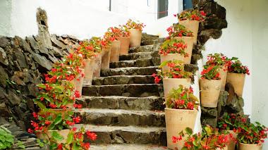Un paseo por los Jardines de Cap Roig