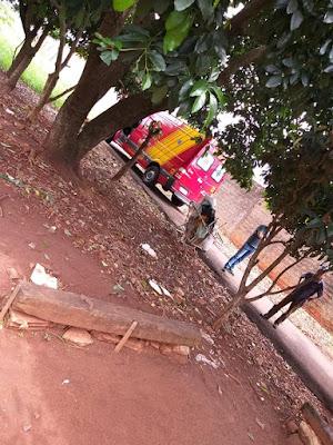 Arapongas: Mulher cai de abacateiro e vem a óbito