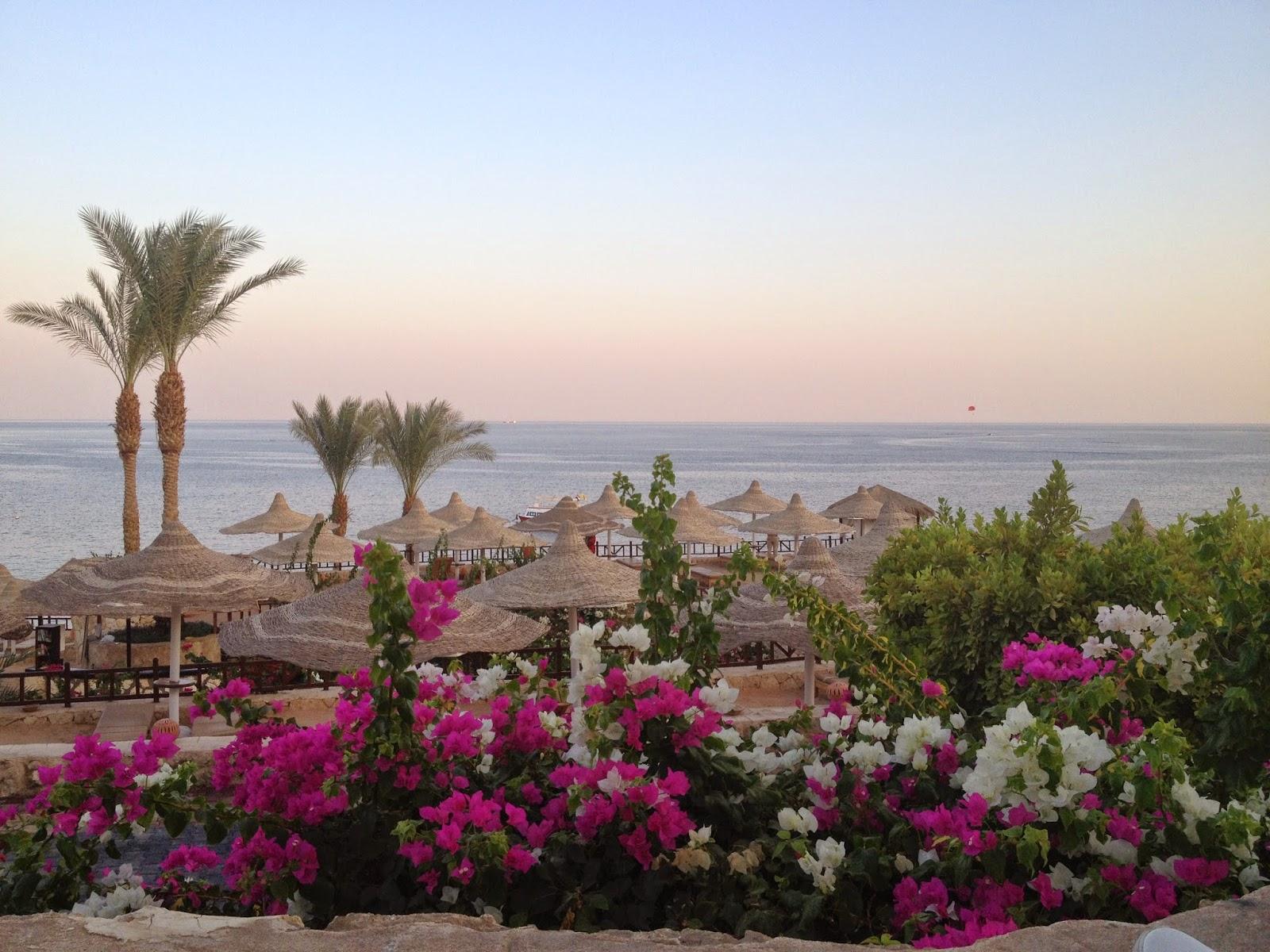 обычно красивые фотообои египет шарм эль шейх что