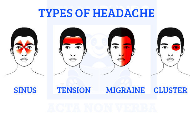 types-of-headaches-in-humans