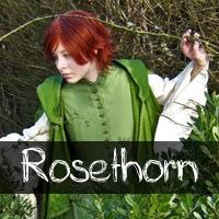 http://albinoshadowcosplay.blogspot.com/2014/01/rosethorn-photo-gallery.html