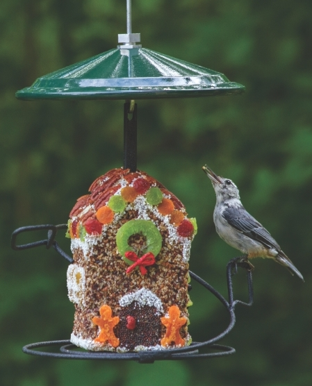 Wild Birds Unlimited: Gingerbread House For The Birds