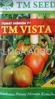 jual benih tomat tm vista,benih tomat tm vista,tomat tm vista,budidaya tomat,benih tomat,lmga agro