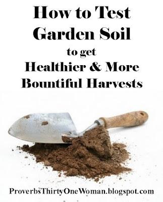 How to Test Soil pH, NPK