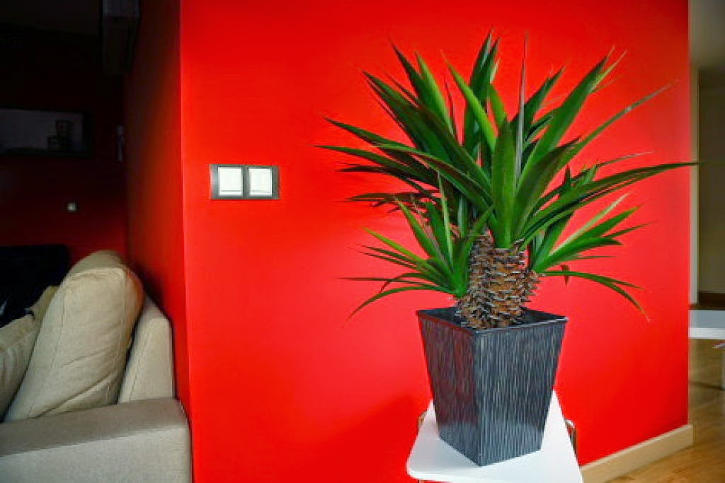 Decoracion con plantas artificiales