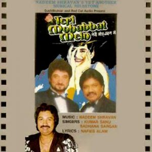 Mp3 Song Download Teri Mohabbat Mein (1993) Bollywood Hindi Movie