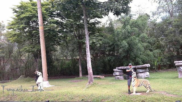 Taman Safari Indonesia II Prigen Pasuruan