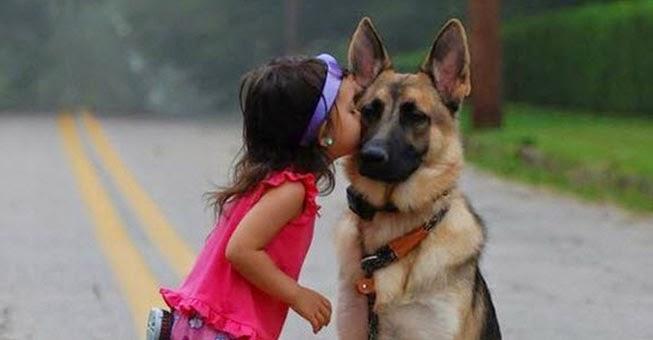 c75f9968cd9 Αυτοί είναι οι 18 λόγοι για να είσαι ευγνώμων στον σκύλο σου! - TooCute