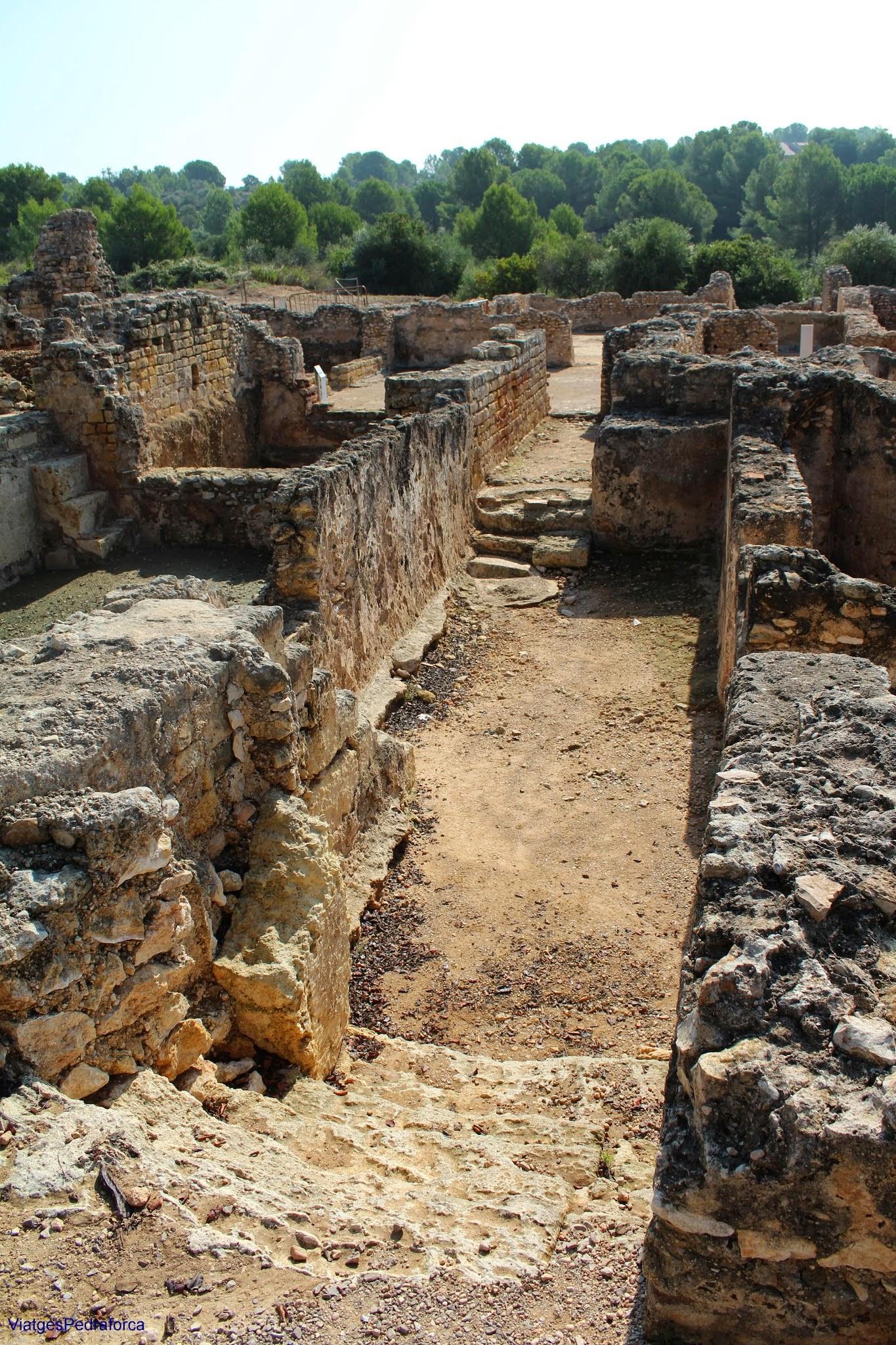 vil.la romana dels munts Altafulla Termes romanes Conjunt Arqueologic de Tarraco