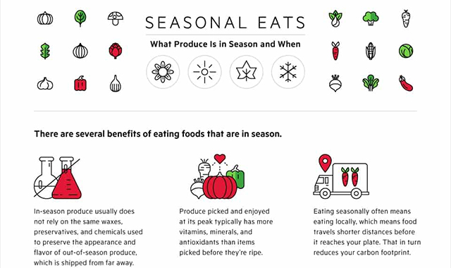 Seasonal Eats: Which Produce is in Season & When