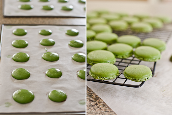 green tea macaron shells